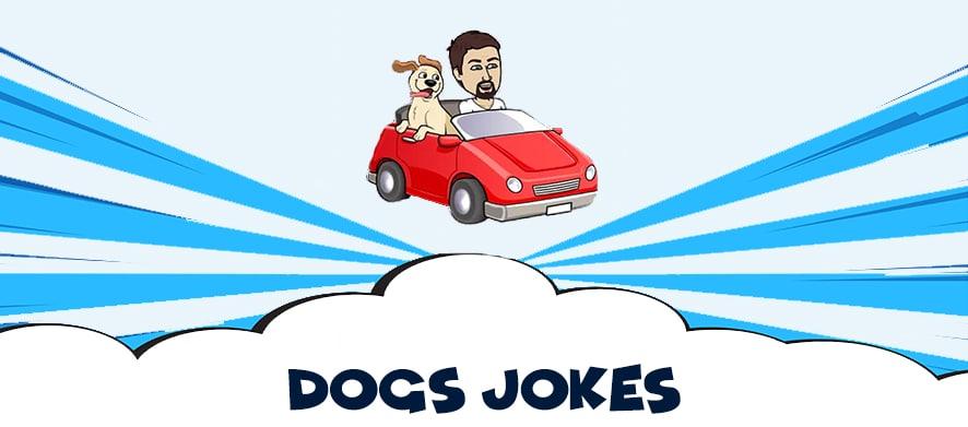 Dogs-jokes