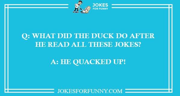 duck duck jokes