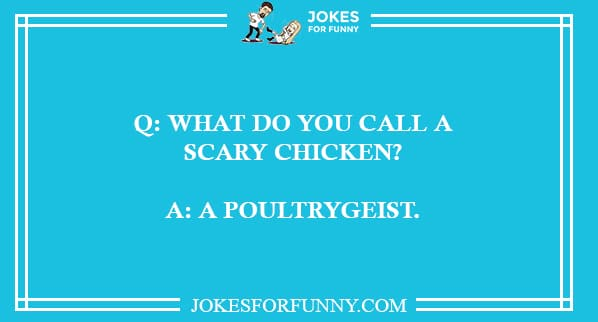 funny chicken jokes