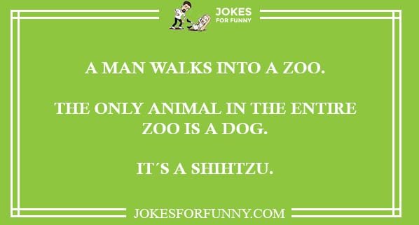 Best Funny Jokes You Ever Read - Jokes for Kids and Adults