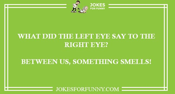 funny reddit jokes