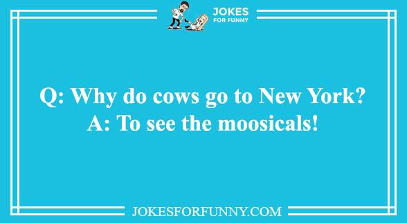 best animal jokes