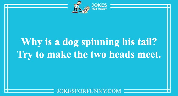 best animal puns